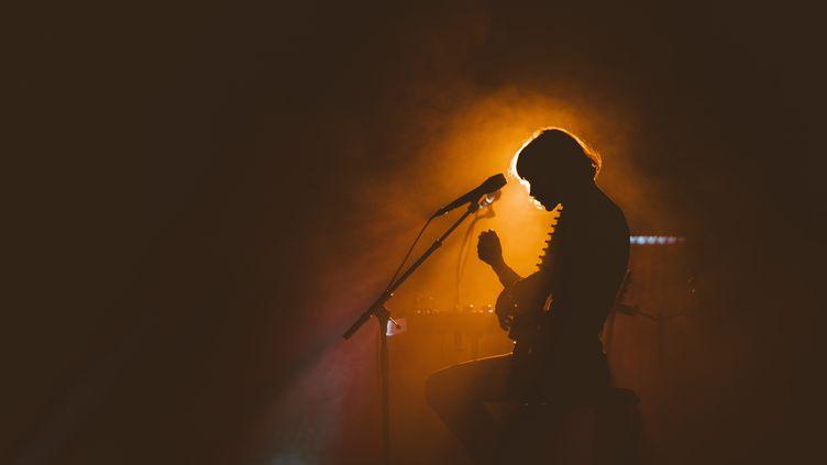 L'auteure-compositrice-interprète Pomme, lors d'un concert le 18 janvier 2020 àCenon (Gironde). (CONSTANT FORME-BECHERAT / HANS LUCAS)