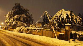 Une ligne électrique a ployé sous le poids de la neige à Romans-sur-Isère, 15 novembre 2019. (NELLY SORBIER / RADIO FRANCE)