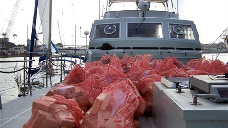 Le contenu d'une ne saisie de près de 900 kilos de cocaïne en août 2007 à Fort-de-France (Martinique) (AFP - DOUANES FRANCAISES)