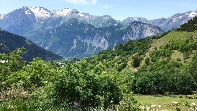 La montagne, le nouvel endroit à la mode pour passer ses vacances d'été. (STÉPHANE MILHOMME / FRANCEINFO)