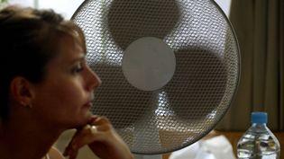Alors que la canicule s'abat à nouveau sur la France la semaine du 24 juin 2019, les ventilateurs sont de sortie chez les particuliers pour faire face à la vague de chaleur. (JEAN-PIERRE MULLER / AFP)