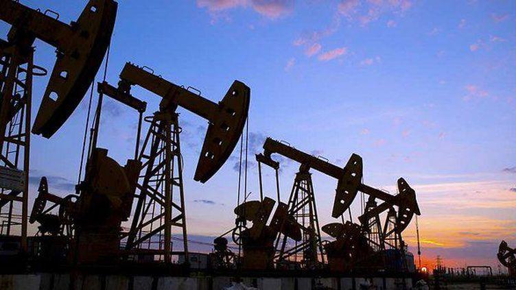 Exploitation du pétrole («Les Echos»)