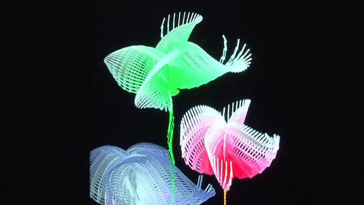 Hortus 2.0 l''exposition d'artistes spécialisés dans le numérique  (France Télévisions/culturebox )