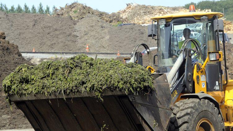 Des engins traitent des algues vertes dans le site de traitement de Lantic (Côtes-d'Armor), le 19 juillet 2010. (DAMIEN MEYER / AFP)