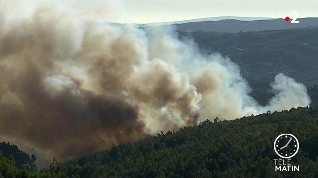 Le centre du Portugal, victime d'un gigantesque incendie