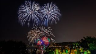 Feu d'artifice à Saint-Jean-Cap-Ferrat (Alpes-Maritimes), le 13 août 2015. (ROBERT PALOMBA / ONLY FRANCE / AFP)
