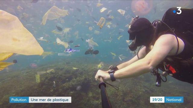 Bali : un plongeur se filme au milieu d'un océan de déchets plastiques
