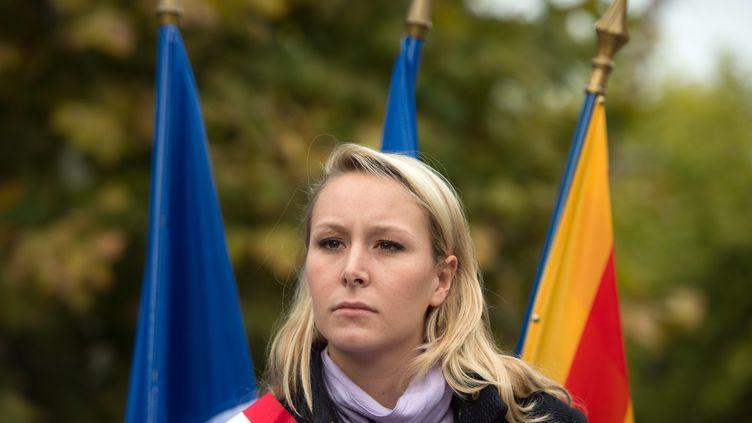 La députée FN du Vaucluse Marion-Maréchal-Le Pen, le 23 octobre 2016 à La Tour-d'Aigues (Vaucluse). (BERTRAND LANGLOIS / AFP)