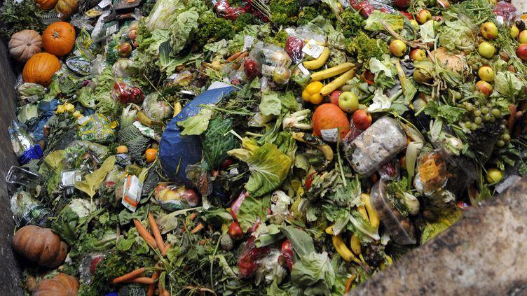 De la nourriture jetée dans une benne (illustration). (JEAN-CHRISTOPHE VERHAEGEN / AFP)