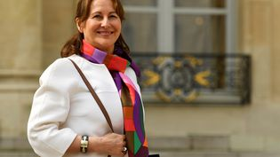Ségolène Royal en avril 2017. (BERTRAND GUAY / AFP)