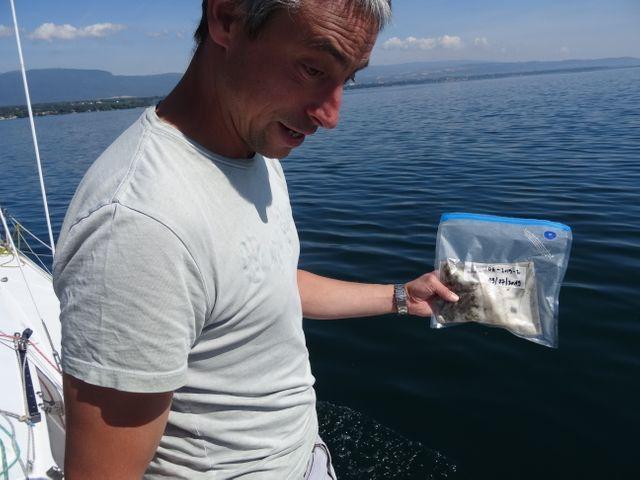 L'un des échantillons de plastique collectés sur le lac Léman. (JEREMIE LANCHE/RADIOFRANCE)