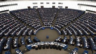 Les députés européens réunis au Parlement à Strasbourg (Bas-Rhin), le 20 mai 2015. (FREDERICK FLORIN / AFP)