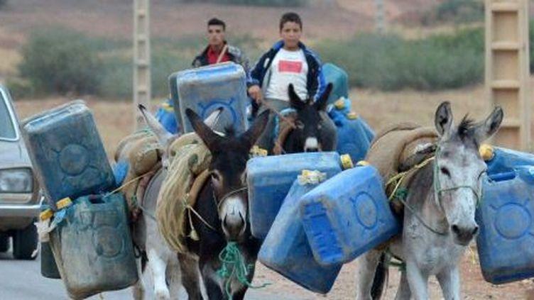 Désormais seuls les ânes peuvent passer la frontière algérienne (AFP)