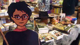 Une effigie du sorcier Harry Potter dans une librairie, le 27 novembre 2000, à Paris. (THOMAS COEX / AFP)