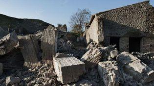 Effondrement de la maison des gladiateurs en novembre 2010  (AFP. R. Salomone. )