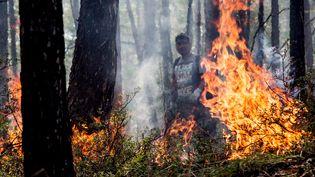 Incendie de forêt sur l'île d'Olkhon, dans l'est de la Sibérie, en Russie, le 28 juillet 2015 (PETR SHELOMOVSKIY / AFP)