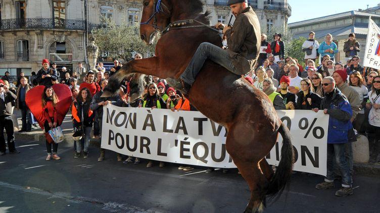 A Montpellier (Hérault), le 12 novembre 2013. (PASCAL GUYOT / AFP)
