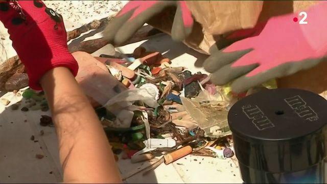"""Environnement : une """"clean walk"""" pour nettoyer la planète"""