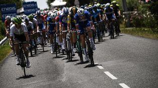 Le peloton du Tour de France entreNoirmoutieret Fontenay-le Comte, le 7 juillet 2018.  (JEFF PACHOUD / AFP)