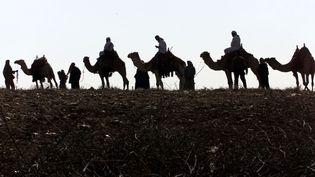 Une caravane de voyageurs internationaux arrive à la frontière jordanienne,lors d'un trajet versBethléem,le 10 décembre 2000. (ALI JAREJKI / REUTERS)