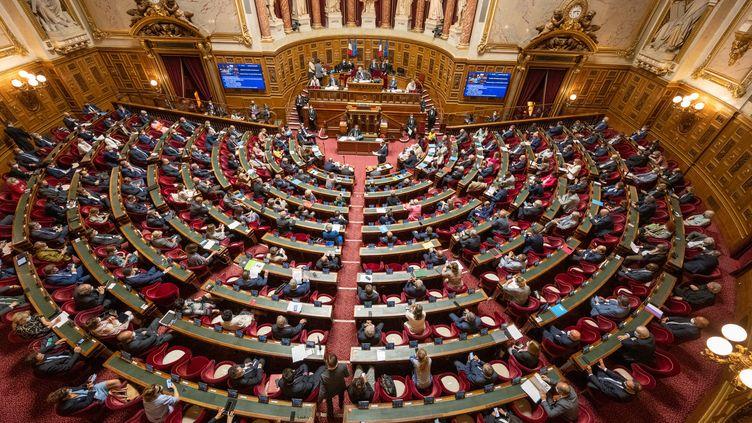 L'hémicycle du Sénat, à Paris, le 2 juin 2021. (SANDRINE MARTY / HANS LUCAS / AFP)