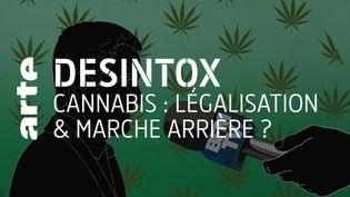 Cannabis : non, les pays ayant légalisé le cannabis ne sont pas revenus sur leur décision (ARTE/2P2L)
