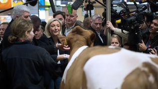 La présidente du Front national, Marine Le Pen, au Salon de l'agriculture, à Paris, le 2 mars 2014. (MARTIN BUREAU / AFP)