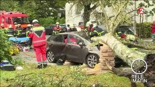 Des arbres ont été arrachés par les rafales de vent. (FRANCE 2)