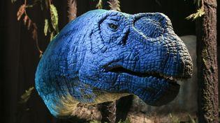 """Exposition """"Autour des dinosaures, un voyage du Jurassique au Crétacé"""".  (PHOTOPQR/LE PARISIEN)"""