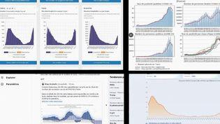 Coronavirus : les précieux graphiques des internautes (France 2)