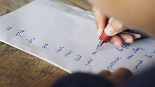 7% des adultes, âgésde 18 à 65 ans, ayant été scolarisés en France, sont en situation d'illettrisme. (ANNE-SOPHIE BOST / MAXPPP)