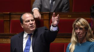 Jean-Christophe Cambadélis, le député et Premier secrétaire du PS, le 15 octobre 2014, à l'Assemblée nationale. (MARTIN BUREAU / AFP)