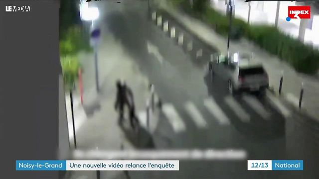 Seine-Saint-Denis : de nouvelles images de l'interpellation à Noisy-le-Grand