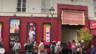 Les théâtre et les salles de cinéma pénalisés par l'épidémie de coronavirus (Capture d'écran France 2)