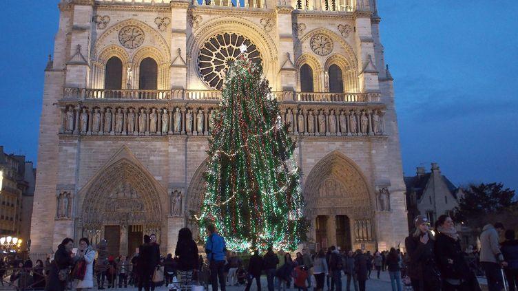 Le sapin de Noël installé sur le parvis de Notre Dame, à Paris, en 2013. (  MAXPPP)