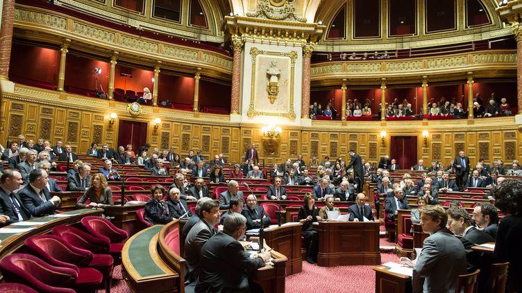 Une séance de questions au gouvernement au Sénat, le 14 janvier 2016. (MAXPPP)