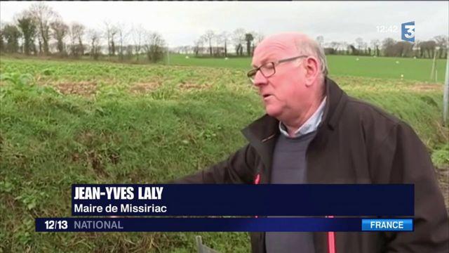 Morbihan : un transporteur tente de masquer l'accident d'un car scolaire