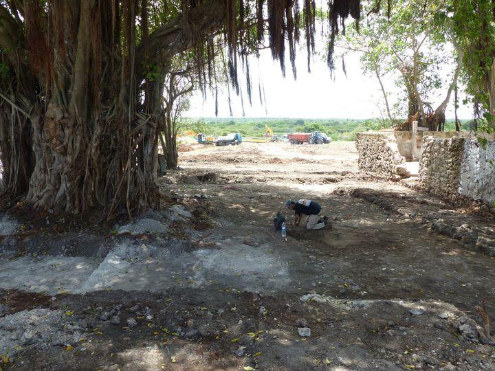 Fouilles sur le site de la sucrerie Saint-Jacques à Anse-Bertrand (Guadeloupe). Sur la droite, mur d'un bâtiment du XIXe siècle. En arrière-plan, les restes du quartier des esclaves.  (Inrap - Thomas Romon)