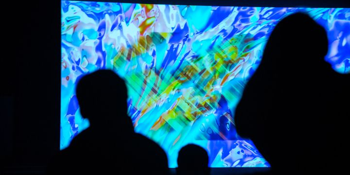 """Screenings"" au Festival Mirage 2016  (Elena Volterrani)"