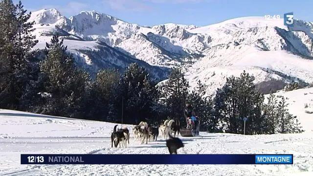 Découverte : des sorties en traineau à chiens en Ariège