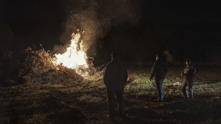 """Des agriculteurs allument un """"feu de colère"""" àVillefranche-de-Lauragais (Haute-Garonne), le 24 septembre 2019. (IDRISS BIGOU-GILLES / HANS LUCAS / AFP)"""