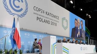 La COP24,conférence climat de l'ONU, àKatowice, en Pologne, le 2 décembre 2018. (JANEK SKARZYNSKI / AFP)