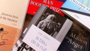 La rentrée littéraire de janvier 2013 : plus de 500 romans à paraître  (Laurence Houot/Culturebox)