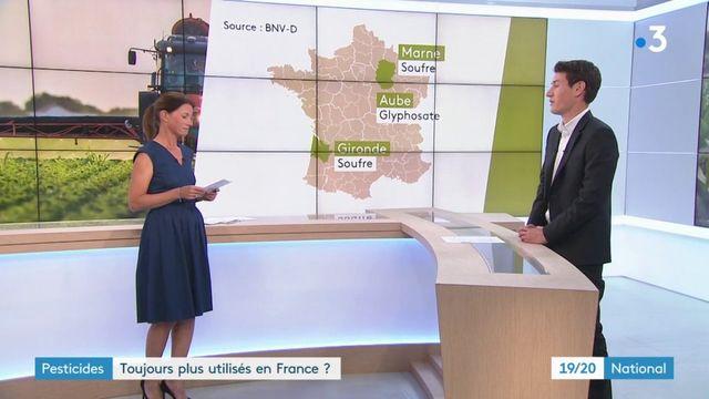 Pesticides : la France n'a pas réussi à diminuer de moitié sa consommation