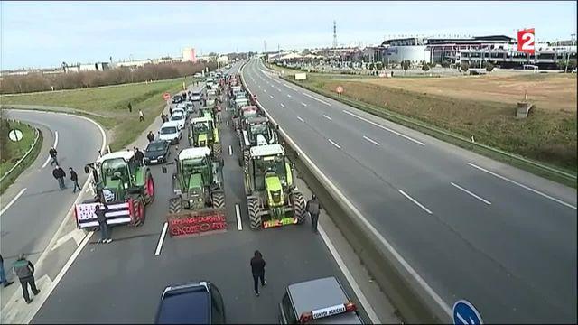 Crise des éleveurs : un rassemblement d'envergure en Bretagne