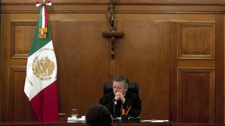 Le juge de la Cour suprême du Mexique Arturo Saldivar, le 21 mars 2012 à Mexico. (YURI CORTEZ / AFP)