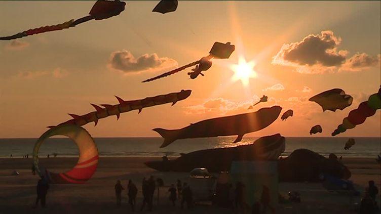 Cers-Volants de nuit à Berck-sur-Mer (P. Mahieu / France Télévisons)
