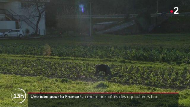 Saint-Martin-du-Var : la mairie rachète des terres agricoles pour faciliter les circuits courts