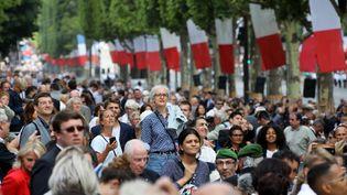 Les spectateurs jouent des coudes pour apercevoir les soldats, le 14 juillet 2017, sur les Champs-Elysées. (LUDOVIC MARIN / AFP)