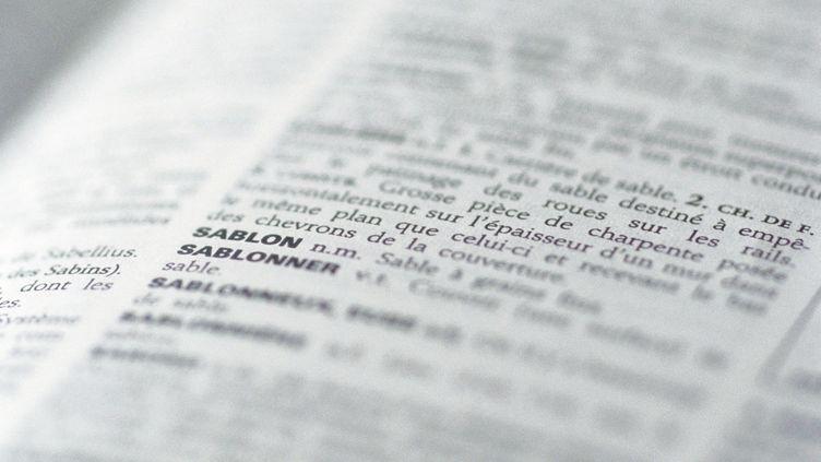 """La Commission d'enrichissement de la langue française,propose de traduire """"fake news""""par le terme """"infox"""" ou""""information fallacieuse"""". (LAURENCE MOUTON / MAXPPP)"""
